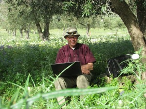 Kent Brown in an olive grove, Sicily, 2013